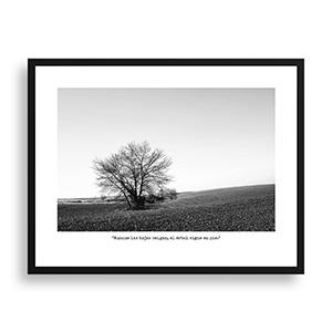 Fotografía original Día 15 con marco negro